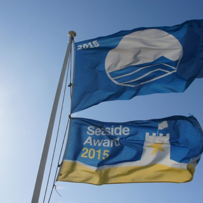 Seascape - Widemouth Bay Flags